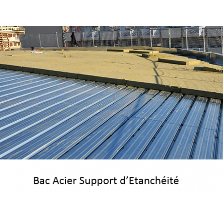Bac acier en dr me ard che for Toit en polycarbonate transparent